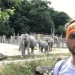 Elefanten Selfie